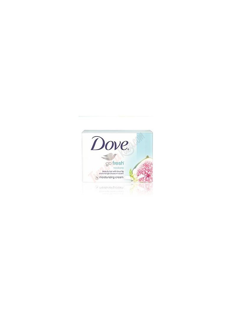 Dove Go Fresh Restore Cream Bar Sabun 100 gr