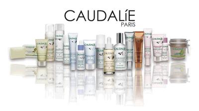 Caudalie Vinosource Fluide Matifiant Hydratant 40 ml