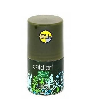 Caldion Zen For Men Deo...