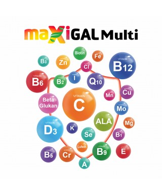 Maxigal Multivitamin Multimineral 30 Kapsül